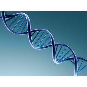 DNA schade door elektromagnetische straling