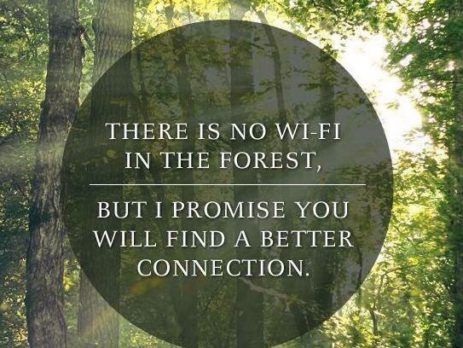 no_wifi_connection_in_forest